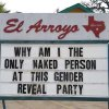 el-arroyo-aurtin-why-am-only-naked-person-at-this-gender-reveal-party.jpeg